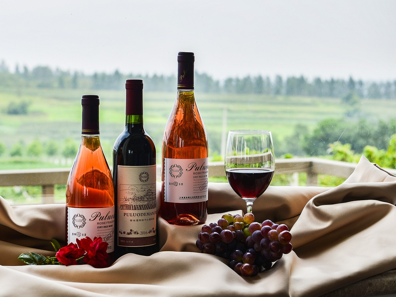 lifestyle-degustacja-wina-wino-slodkie-wino-wytrawne